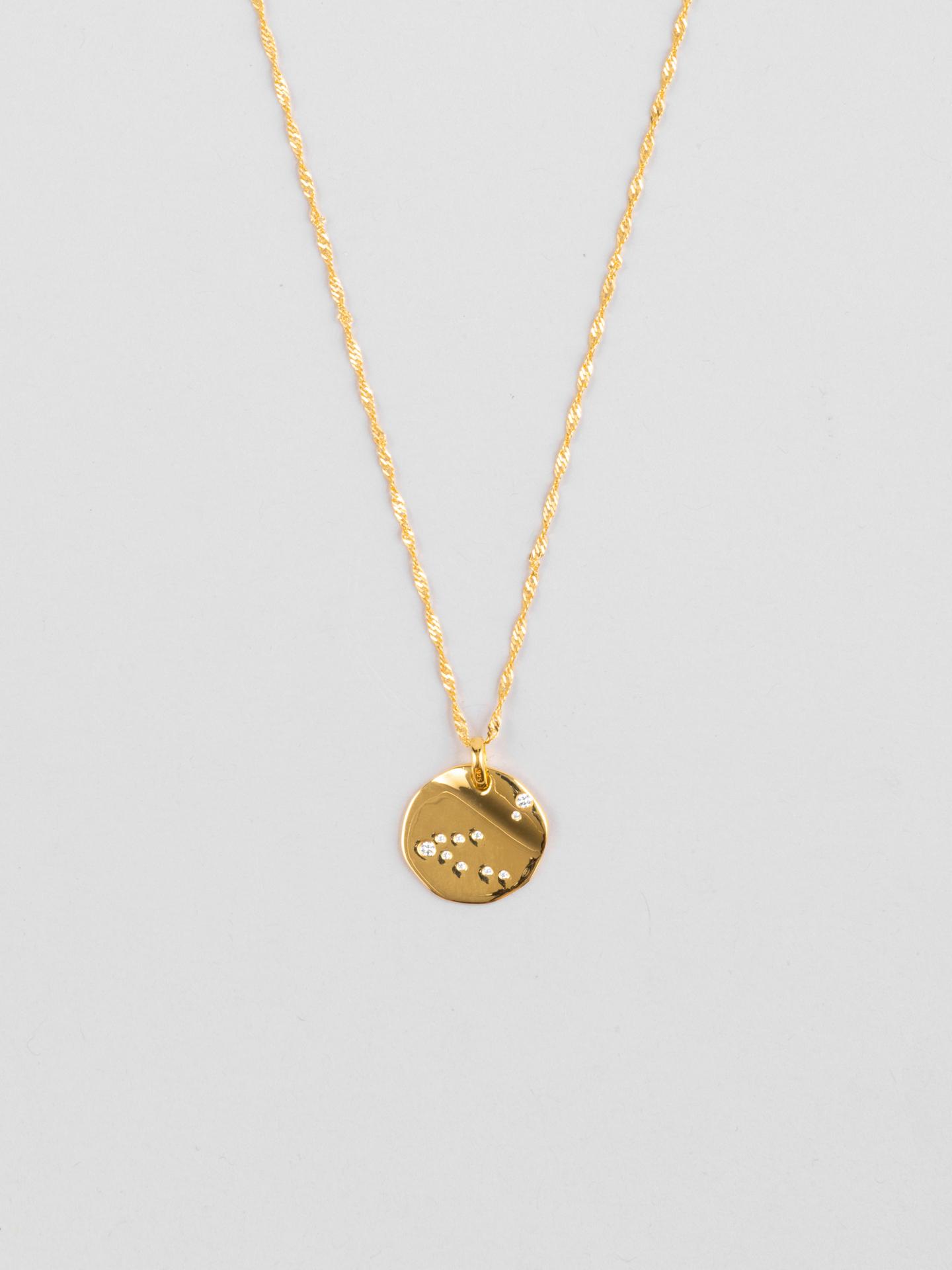 Capricorn Zodiac Disc Halskette