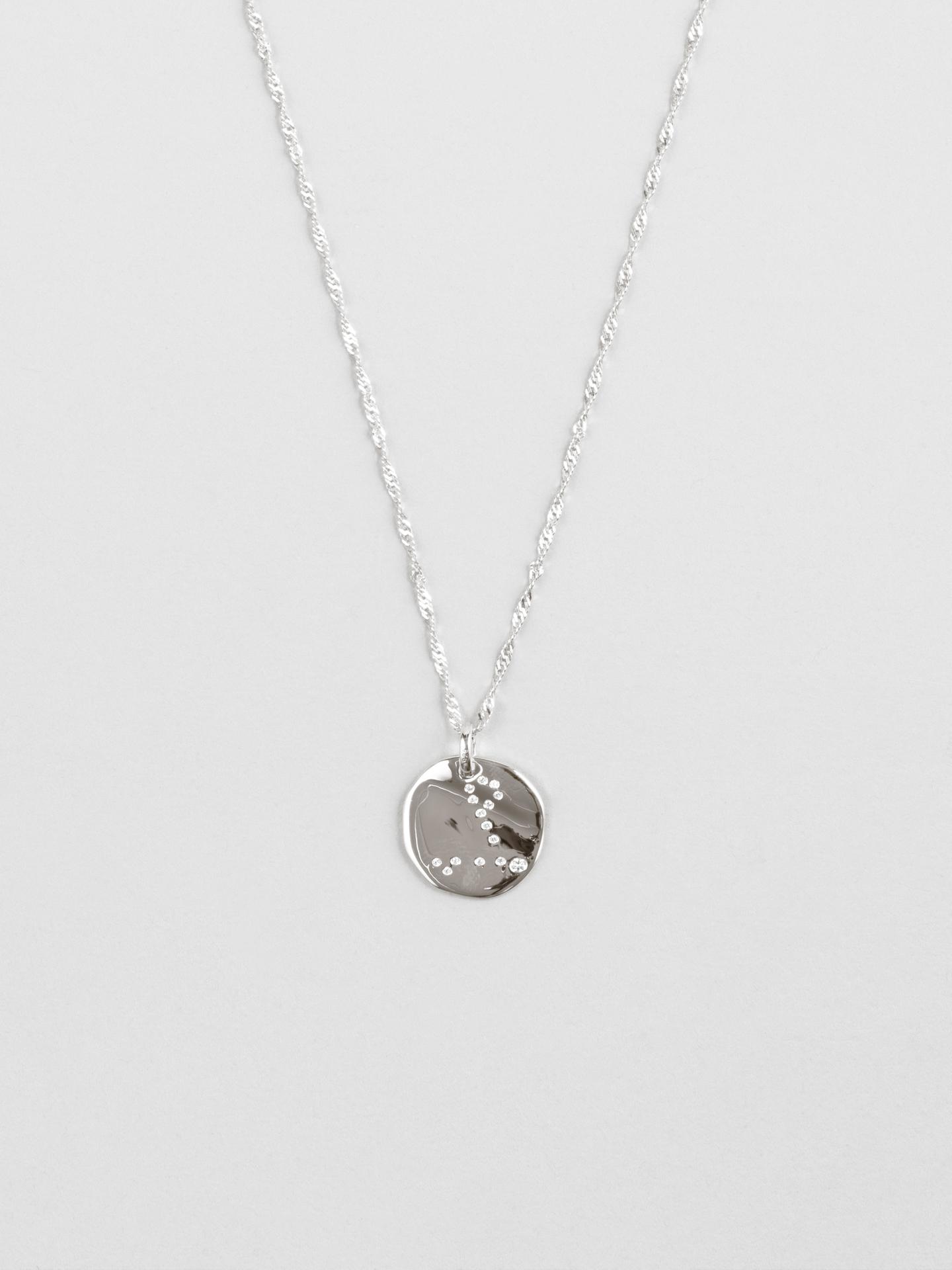 Pisces Zodiac Disc Necklace