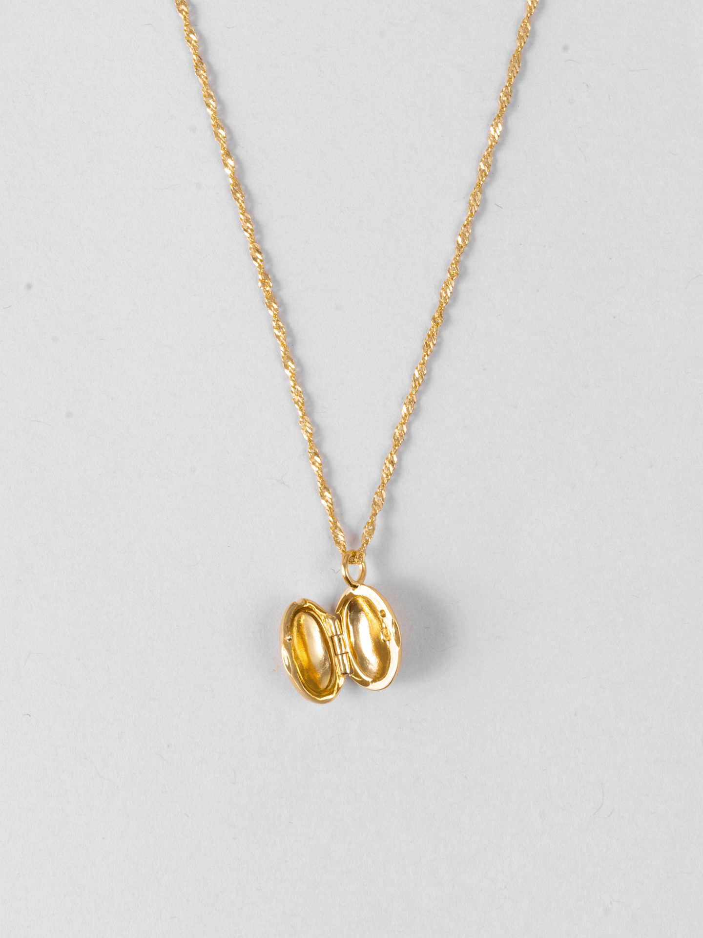Shiny Locket Necklace